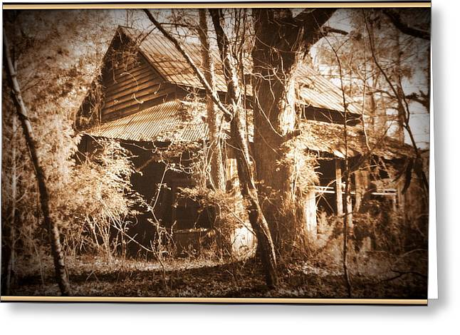 Backwoods Barn In Sepia Greeting Card by Lisa Wooten