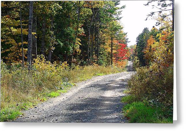 Gravel Road Mixed Media Greeting Cards - Backwoods road in Autumn Greeting Card by Janet Ashworth