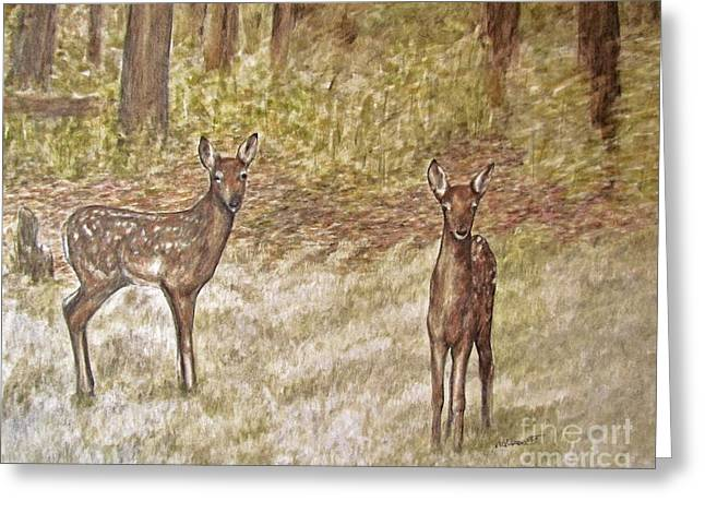 Fawn Mixed Media Greeting Cards - Backyard fawns Greeting Card by Meagan  Visser