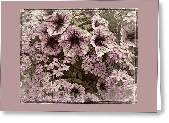 Gift Greeting Cards - Backyard Floral Greeting Card by Thom Zehrfeld