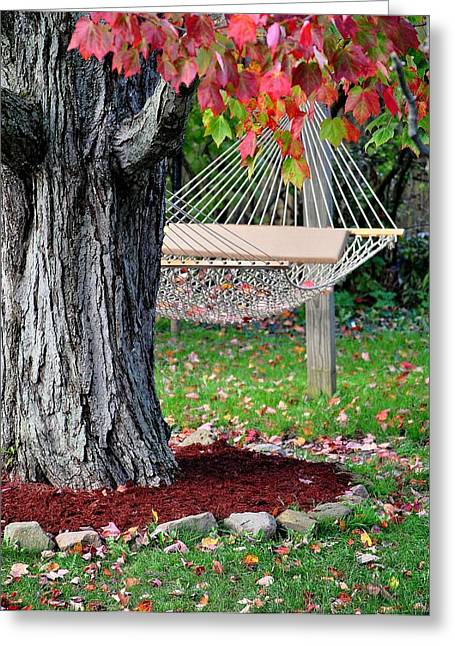 Oak Hammocks Greeting Cards - Backyard Hammock Greeting Card by Frozen in Time Fine Art Photography