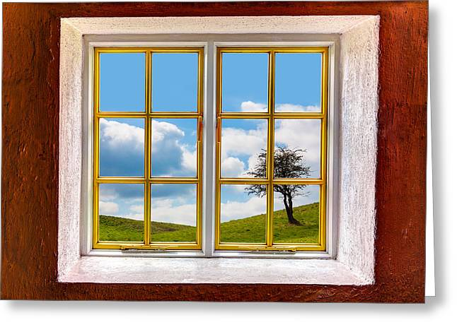 Looking Out Side Greeting Cards - Backyard Meadow Greeting Card by Semmick Photo