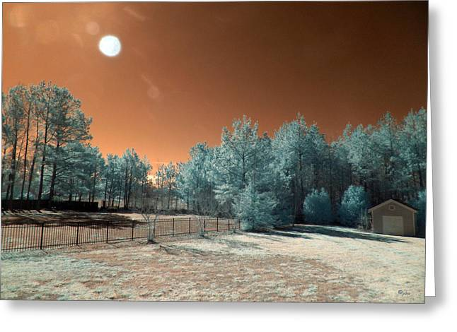 Paulette Wright Digital Art Greeting Cards - Backyard Morning IR Greeting Card by Paulette B Wright