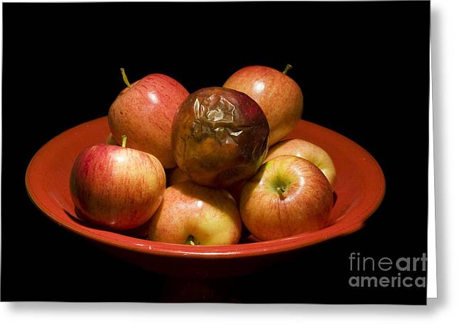 Discrimination Greeting Cards - Bad Apple Greeting Card by William H. Mullins