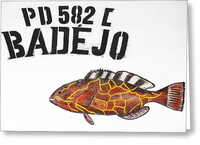 Decorative Fish Greeting Cards - Badejo Greeting Card by Gaspar Avila