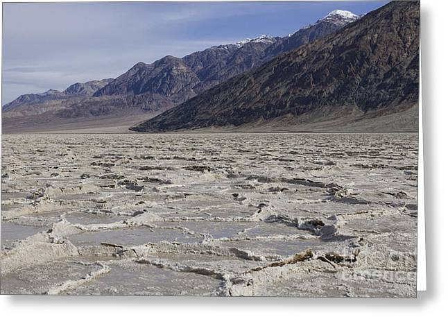 Thin Greeting Cards - Badwater Basin Vista Greeting Card by Sandra Bronstein