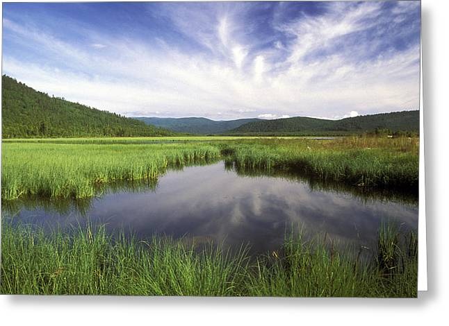 Pond Photographs Greeting Cards - Baikal Greeting Card by Anonymous