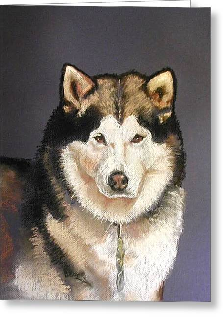 Husky Pastels Greeting Cards - Bailey the Malamute Greeting Card by Lenore Gaudet