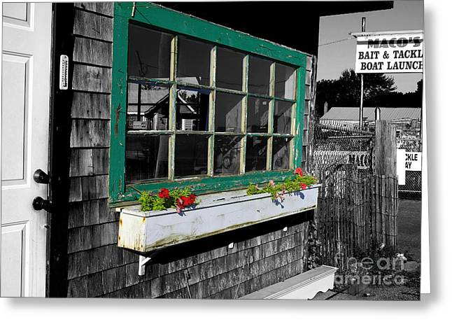 Light Tackle Greeting Cards - Bait and Tackle Boat Launch Greeting Card by David DeCenzo