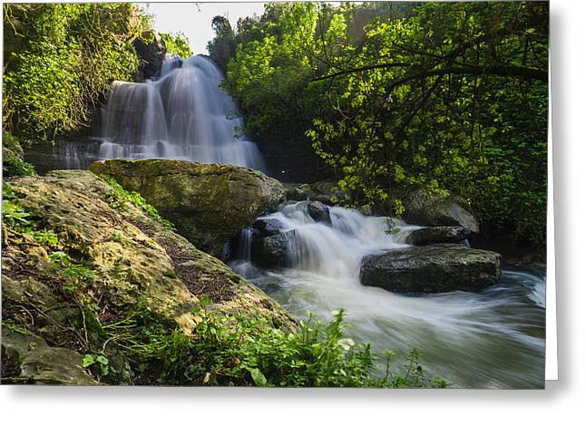 Branch Hill Pond Greeting Cards - Bajouca Waterfall III Greeting Card by Marco Oliveira