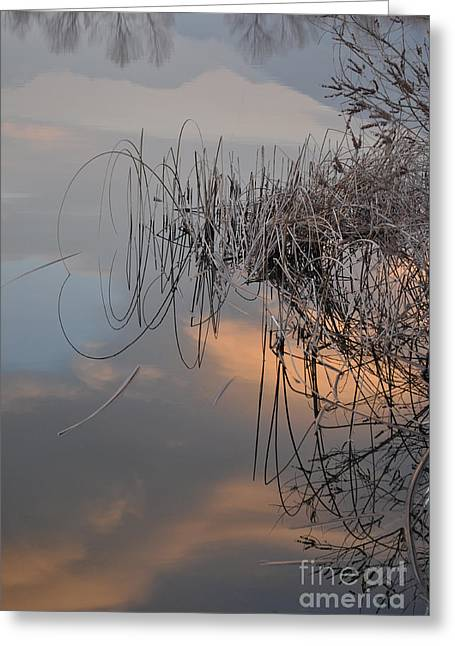Subtle Colors Greeting Cards - Balance of elements Greeting Card by Simona Ghidini