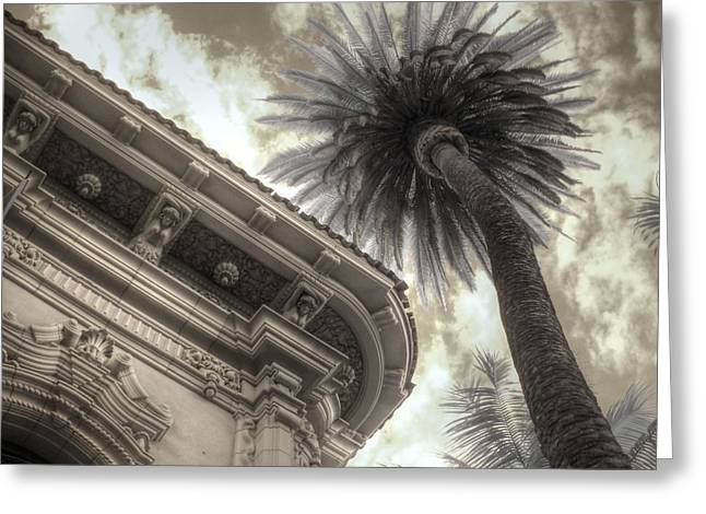 Infared Photography Greeting Cards - Balboa Park Palm Tree Greeting Card by Jane Linders