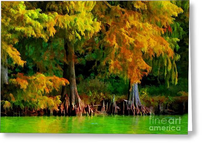 Cypress Knees Digital Art Greeting Cards - Bald Cypress 4 - Digital effect Greeting Card by Debbie Portwood