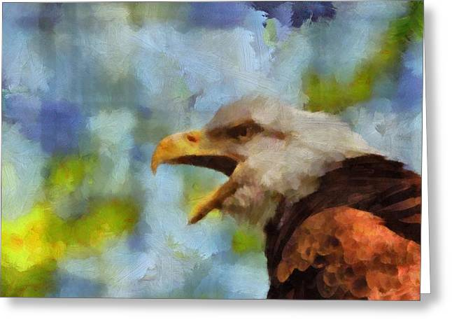 Bird On Tree Mixed Media Greeting Cards - Bald Eagle Portrait Greeting Card by Dan Sproul
