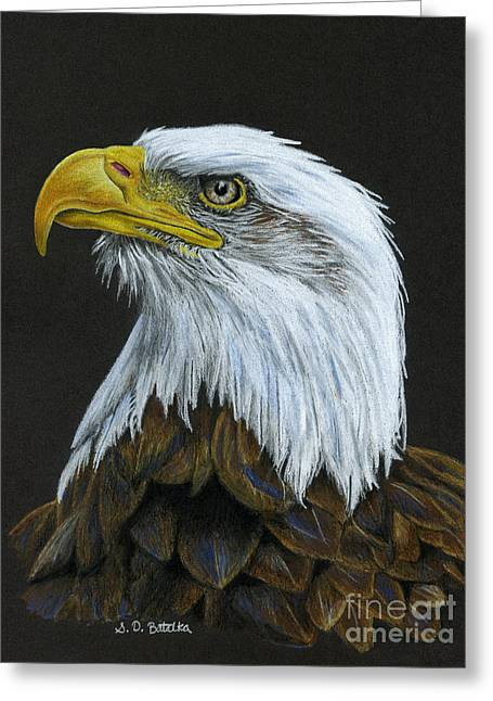 4th July Drawings Greeting Cards - Bald Eagle Greeting Card by Sarah Batalka
