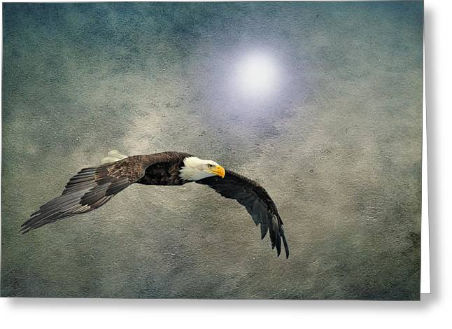 Cabin Wall Greeting Cards - Bald Eagle Textured Art Greeting Card by David Dehner