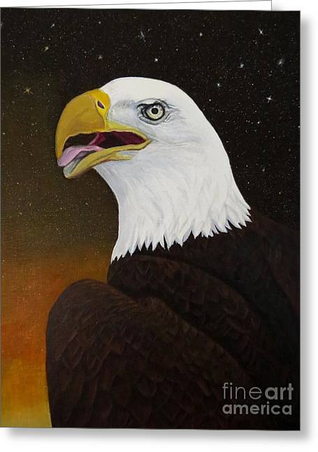 Eagle Greeting Cards - Bald eagle Greeting Card by Zina Stromberg