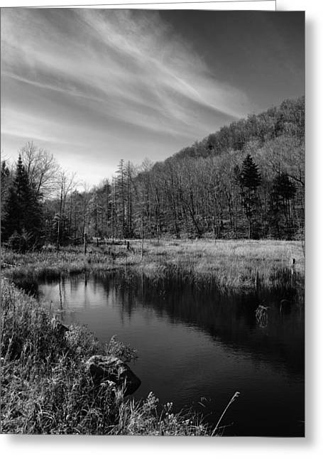 Old And New Greeting Cards - Bald Mountain Pond in October Greeting Card by David Patterson