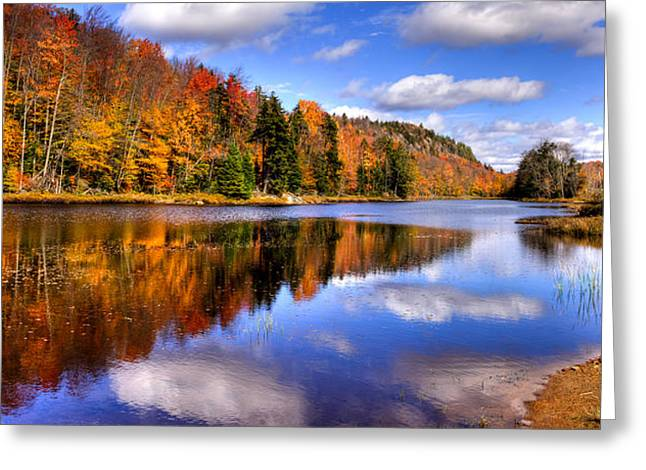 David Patterson Greeting Cards - Bald Mountain Pond in the Adirondack Mountains Greeting Card by David Patterson