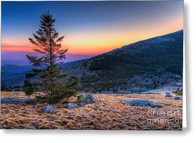 Carver Greeting Cards - Bald Sunset - Roan Mountain Greeting Card by Dan Carmichael