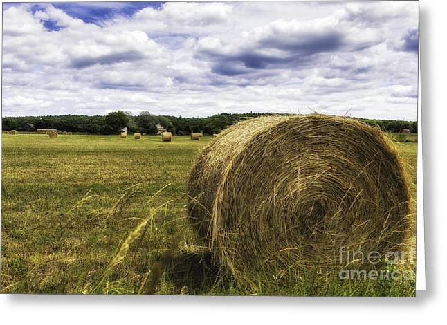 Manitoulin Greeting Cards - Bale Of Hay Greeting Card by Timothy Hacker
