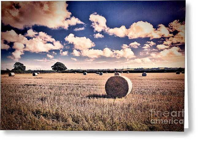 Harvest Time Greeting Cards - Baled Out Greeting Card by Steve Purnell