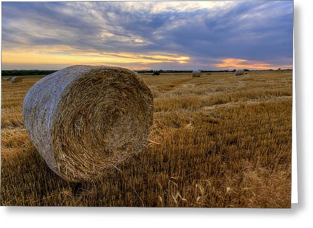 Baled Greeting Card by Scott Bean