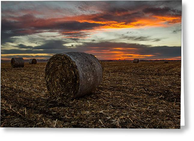 Hay Bales Photographs Greeting Cards - Bales Greeting Card by Aaron J Groen