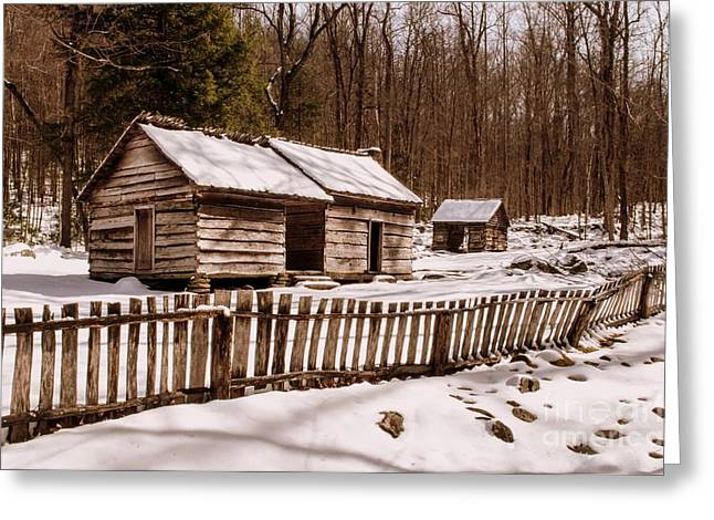 Log Cabins Framed Prints Greeting Cards - Bales Cabin in Winter Greeting Card by Debbie Green