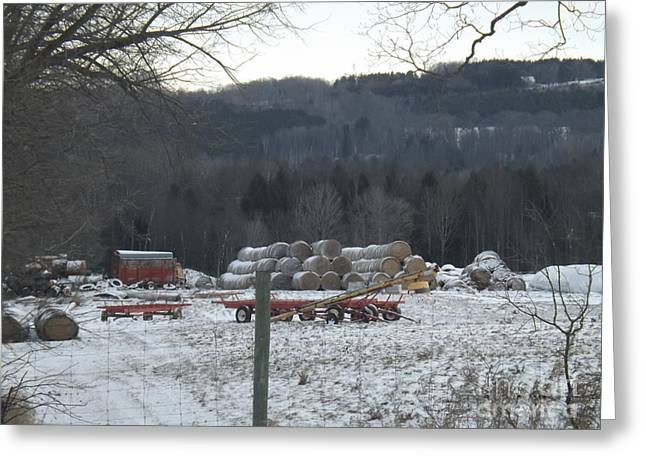 Winter Landscape With Animals Greeting Cards - Bales of Hay Greeting Card by Brenda Brown