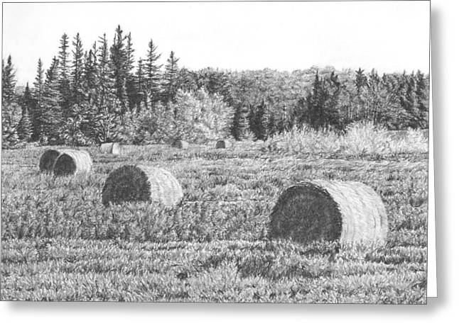 Bale Drawings Greeting Cards - Bales on Field Greeting Card by Michelle Moroz-Chymy
