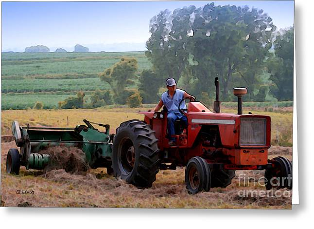 Bailing Hay Greeting Cards - Baling Hay Greeting Card by E B Schmidt
