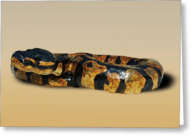 Reptiles Ceramics Greeting Cards - Ball Python Greeting Card by Jeanette K