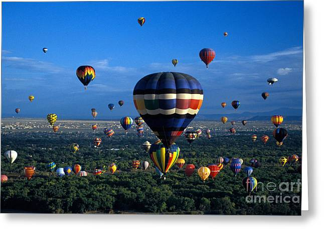 Balloon Fiesta Greeting Cards - Balloon Festival Greeting Card by Mark Newman