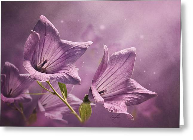 Balloon Flowers Greeting Card by Ann Lauwers