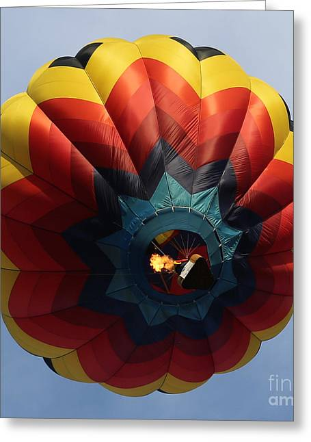 Prosser Balloon Rally Greeting Cards - Balloon Square 3 Greeting Card by Carol Groenen