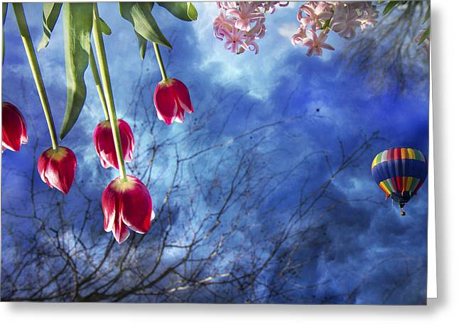 Inverted Color Greeting Cards - Balloonist  Greeting Card by Betsy A  Cutler