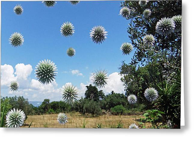 BALLS Greeting Card by Eric Kempson