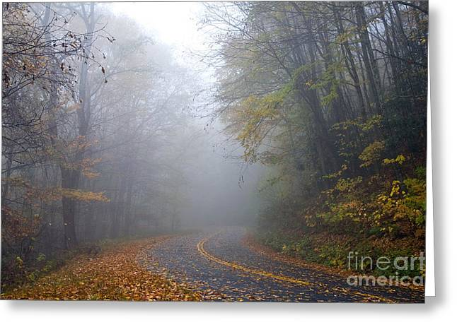 Mountain Road Greeting Cards - Balsam Mountain Road Greeting Card by Gregory G. Dimijian, M.D.