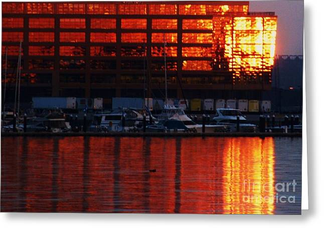 Buildings In The Harbor Greeting Cards - Baltimore Harbor Sunset Greeting Card by Marcus Dagan