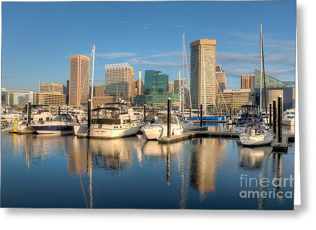 Inner World Greeting Cards - Baltimore Inner Harbor Skyline I Greeting Card by Clarence Holmes