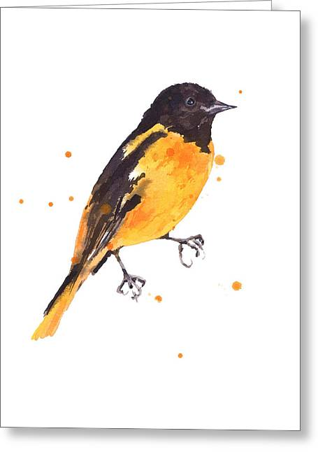 Baltimore Oriole Greeting Cards - Baltimore Oriole Beauty Greeting Card by Alison Fennell