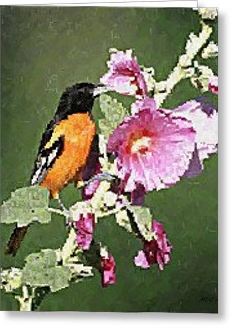 Oriole Pastels Greeting Cards - Baltimore Oriole Bird Greeting Card by Olde Time  Mercantile