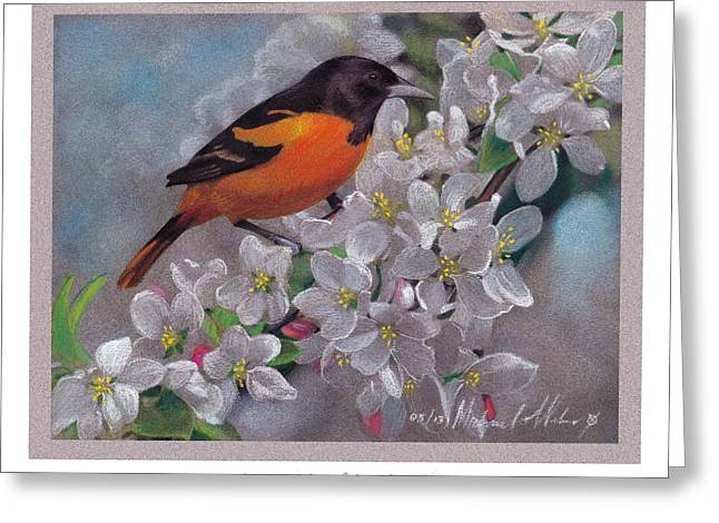Oriole Pastels Greeting Cards - Baltimore Oriole Greeting Card by Michael  Weber