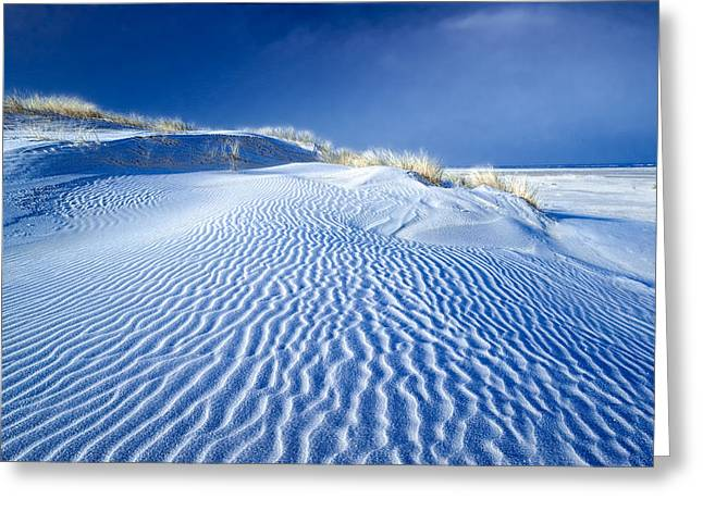 Inseln Greeting Cards - Baltrum - Frost on the dunes No 2 Greeting Card by Martin Liebermann