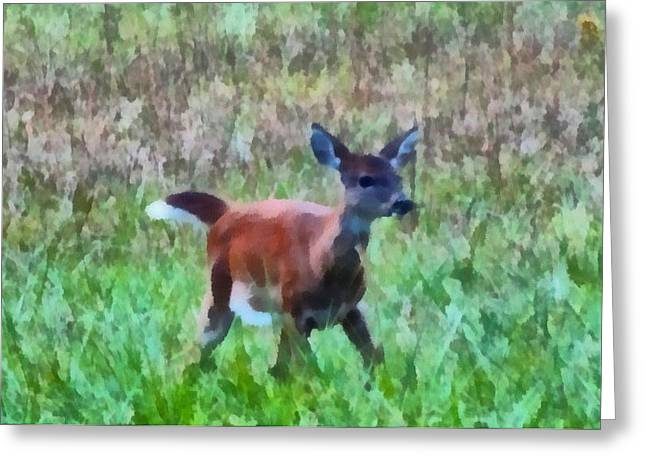 Fawn Mixed Media Greeting Cards - Bambi Greeting Card by Dan Sproul