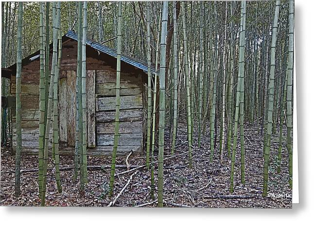 Bamboo House Greeting Cards - Bamboo Abandoned House Old Shed - Overtaken Greeting Card by Rebecca Korpita
