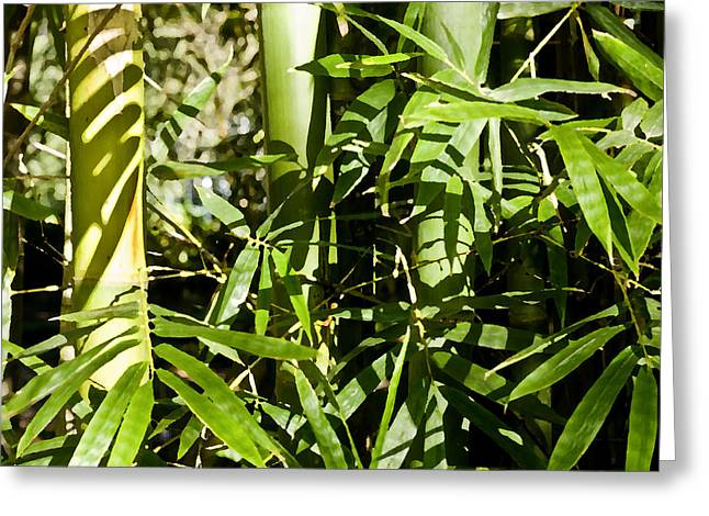 Green Bamboo Greeting Cards - Bamboo and Leaves DB Greeting Card by Rich Franco