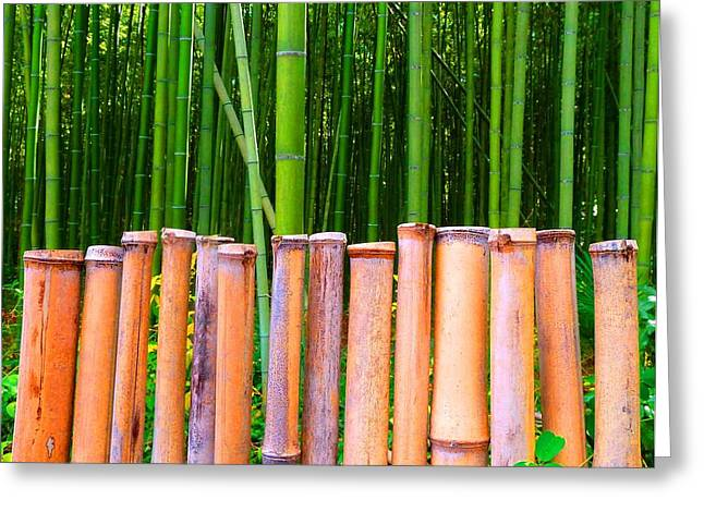 Bamboo Fence Greeting Cards - Bamboo Fence Greeting Card by Julia Ivanovna Tanner