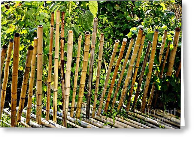 Bamboo Fence Greeting Cards - Bamboo Fencing Greeting Card by Lilliana Mendez